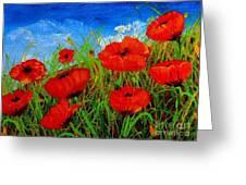 Tuscan Poppies Greeting Card