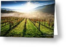Tuscan Sunrise Greeting Card