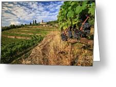 Tuscan Vineyard And Grapes Greeting Card