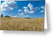 Tuscany Landscape With The Town Of Pienza, Val D'orcia, Italy Greeting Card