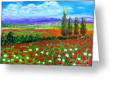 Tuscany Poppies Field Greeting Card
