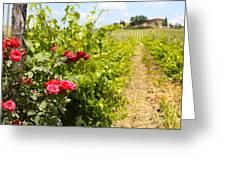 Tuscany Villa And Roses Greeting Card