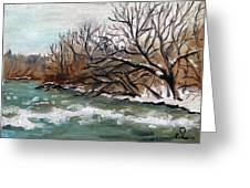 Twelve Mile Creek Greeting Card