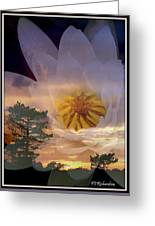 Twilight Lily Greeting Card