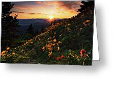 Twilight Of The Balsamroot Greeting Card