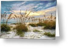Twilight Sea Oats Greeting Card