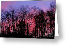 Twilight Trees Greeting Card