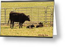 Twin Calves Greeting Card