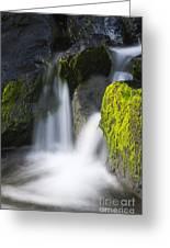 Twin Cascades Greeting Card