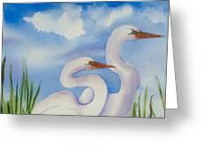 Twin Egrets 2 Greeting Card