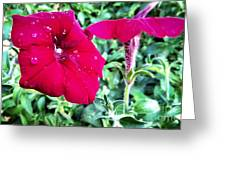 Twin Flower Power Greeting Card