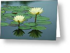 Twin Reflections Greeting Card