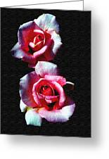 Twin Roses Greeting Card