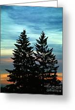 Twin Trees Greeting Card