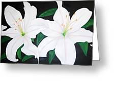 Twin White Lillies Greeting Card