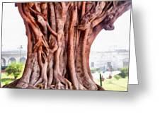 Twisted Gnarled Tree Greeting Card