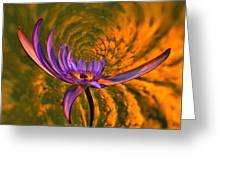 Twisted Waterlily Greeting Card