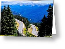 Twists And Turns Greeting Card