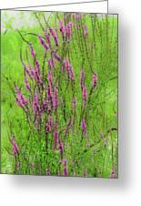 Twisty Flowers Greeting Card