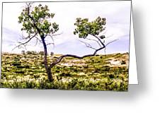 Two Branches Greeting Card