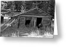 Two Cabins One Outhouse Greeting Card