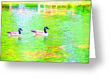 Two Canadian Geese In The Water Greeting Card