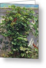 Two Cardinals On The Vine Tree Greeting Card