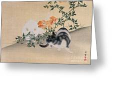Two Cats Greeting Card