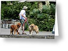 Two Dogs And Man Greeting Card