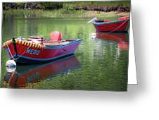 Two Dories Greeting Card