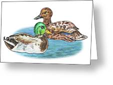 Two Ducks Greeting Card