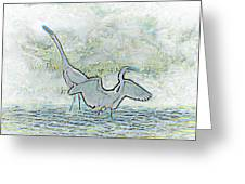 Two Egrets In Water I Glow Brilliant On White II Greeting Card