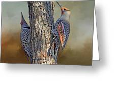 Two Flickers Greeting Card