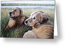 Two Golden Retriever Greeting Card