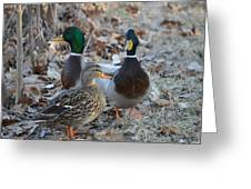 Two Guys And A Gal Greeting Card