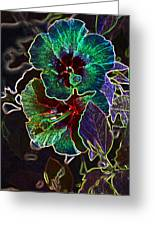 Two Hibiscus Glowing Edges Abstract Greeting Card