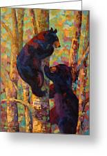 Two High - Black Bear Cubs Greeting Card