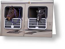 Two Horses Are Ready To Travel Greeting Card