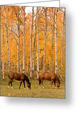 Two Horses Grazing In The Autumn Air Greeting Card