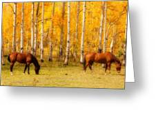 Two Horses In The Colorado Fall Foliage Greeting Card