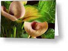 Two Lily With Leaf Greeting Card