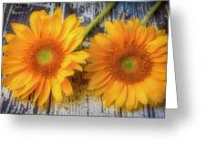 Two Lovely Sunflowers Greeting Card