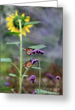 Two Monarch Butterflies And Sunflower 2011 Greeting Card
