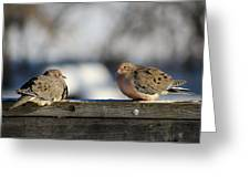 Two Mourning Doves Greeting Card
