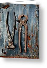 Two Old Rusty Pliers Greeting Card