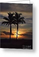 Two Palms At Dawn 18222 Greeting Card