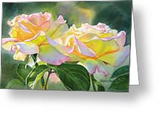 Two Peace Rose Blossoms Greeting Card