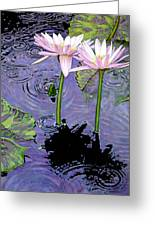 Two Pink Lilies In The Rain Greeting Card