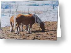 Two Ponies In The Snow Greeting Card