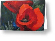 Two Poppies  Greeting Card